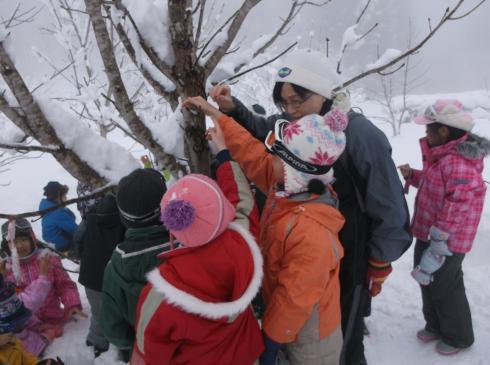 雪山散策 2年生
