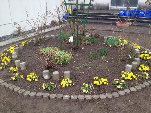 花壇に春が!