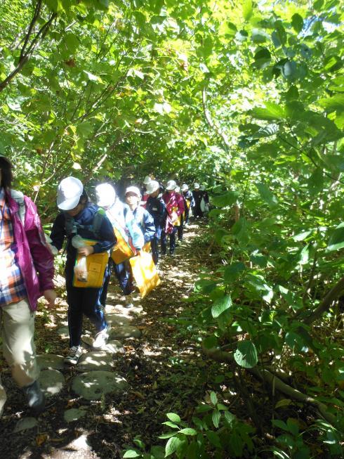 ブナ林を散策